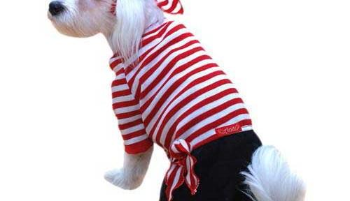 Mi perro también se disfraza