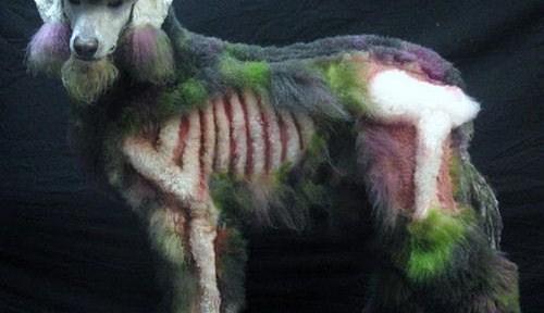 Tu perro en los huesos